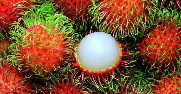 frutas-raras-1